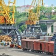 Stock Photo: Cargo crane and train