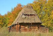 Oude hut met een stro dak — Stockfoto