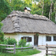Stockfoto: Ancient hut with straw roof