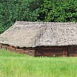 Ancient barn with a straw roof — Stock Photo #27296313