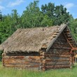 Ancient barn with a straw roof — Stock Photo #27296331