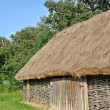 Ancient barn with a straw roof — Stock Photo #27296343