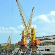 Stock fotografie: Port cargo crane and train