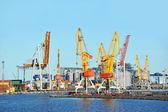 Port cargo crane — Stock Photo