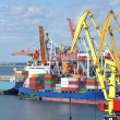 Cargo crane and container ship — Foto Stock