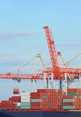 Cargo crane and container ship — Stock Photo