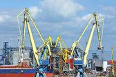 散货船在港口起重机下 — Stock fotografie