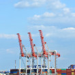Port cargo crane and container — Stock Photo #32774549