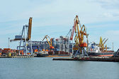 Buque de carga a granel en grúas de puerto — Foto de Stock