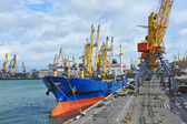 Bulk cargo ship under port crane — Foto de Stock