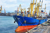 Massen-Frachter unter Port-Kran — Stockfoto
