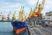 Bulk cargo ship under port crane — Stok fotoğraf