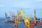 Bulk vrachtschip onder poort kraan — Stockfoto
