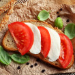 Mozzarella tomato sandwich — Stock Photo #49658893