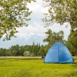 Camping in the Forest in sunny day — Stock Photo
