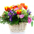 Beautiful bouquet in wattled basket — Stock Photo
