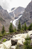 The mountain river flowing down from glaciers — Stock Photo