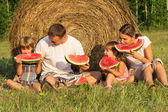 Family on picnic in the field — Stock Photo