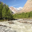 The mountain river flowing down from glaciers — Stock Photo #27047727