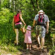 Family on walk in mountains in the summer day — Stock Photo #27047769