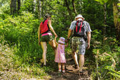 Family on walk in mountains in the summer day — Stock Photo