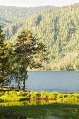 Bela paisagem sobre o lago teletsky em montanhas altai. — Fotografia Stock