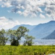 Russia. The lake Teletsky landscape mountains in the summer at s — Stock Photo