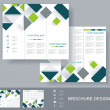 Vector brochure template design. — Stock Vector #35997605