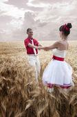 Nygifta gå på fältet — Stockfoto