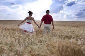 Newlyweds go on the field — Stock Photo