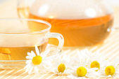 Teacup with herbal chamomile tea — Stock fotografie