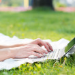 Young man working in the park with a laptop — Stock Photo #30729445