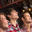 Portrait of the fans in the bar — Stock Photo #35781291