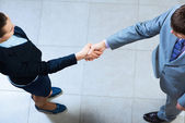 Business woman and businessman shaking hands — Stock Photo