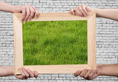 Frame with grass — Stock Photo