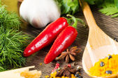 Chilli, herbs and spices — Stock Photo