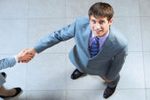 Portrait of a businessman shaking hand — Stock Photo