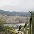 View over monaco and its harbour — Stock Photo