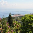View over beautiful landscape of greek island Samos — Stock Photo