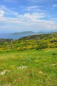 View over green greek island Samos — Stock Photo