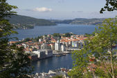 Widok miasta bergen, Norwegia — Zdjęcie stockowe