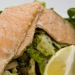 Salad with grilled salmon — Foto de Stock