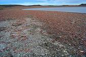 砂漠と湖 — ストック写真