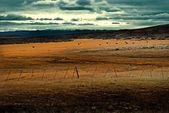 Patagonia — Stock Photo