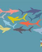 Diseño de carteles de la plantilla con las siluetas de los tiburones dibujados a mano. — Vector de stock
