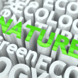 Nature - Green Word. — Stock Photo