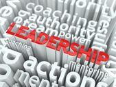 Leadership Concept. — Stock Photo
