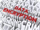 Data Encryption Concept. — Stock Photo