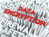 Data Encryption Concept. — Stock Photo