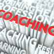 Coaching Concept. — Stock Photo #20140999